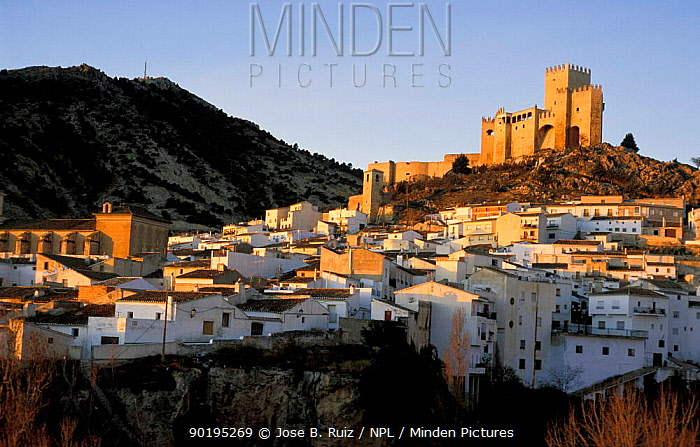 Castle above town of Velez Blanco, near Almeria, Andalucia, Spain  -  Jose B. Ruiz/ npl