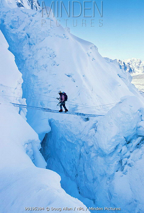 Climber crossing crevasse using ladder Khumbu Ice Fall Mount Everest, Nepal Himylayas  -  Doug Allan/ npl