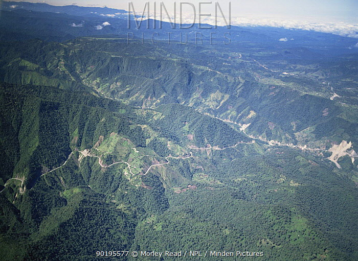 Aerial view of roads and deforestation on western slopes of Andes, Ecuador  -  Morley Read/ npl