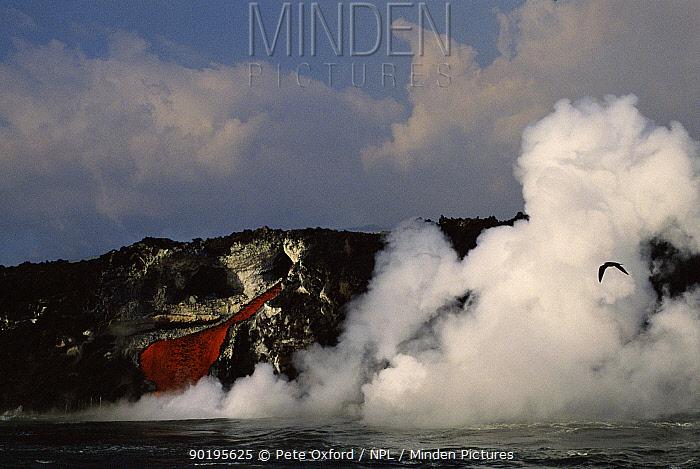 Erruption of parasitic cone, Cabo Hammond, Feb 1995 Fernandina Island, Galapagos  -  Pete Oxford/ npl