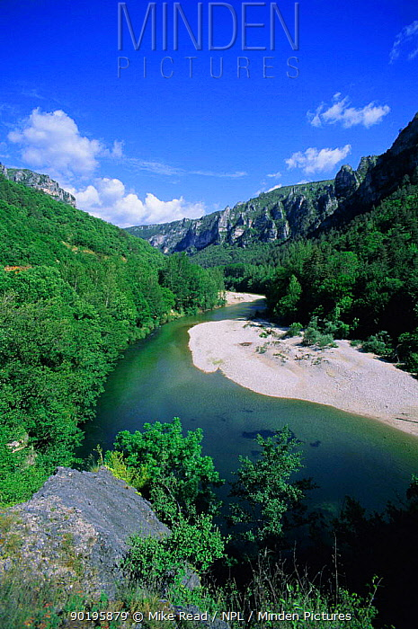 River Tarn in Gorges du Tarn, Lozere, France  -  Mike Read/ npl