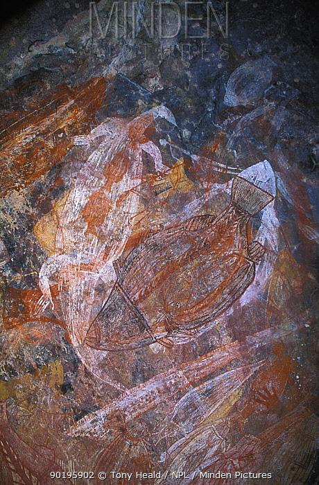 Aboriginal rock paintings, Ubirr rock, Arnhem land, Kakadu NP, Northern Territory, Australia  -  Tony Heald/ npl