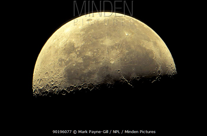 21-day-old waning moon Last quarter  -  Mark Payne-Gill/ npl