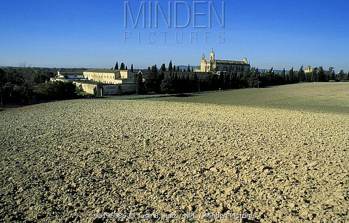 Carthusian monastary, La Cartuja, Jerez de la Frontera, Andalucia, Spain  -  Jose B. Ruiz/ npl