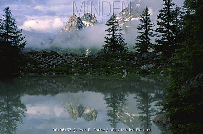 Miage lake with mountain reflections, Aoste, Alps, Italy  -  Jean E. Roche/ npl