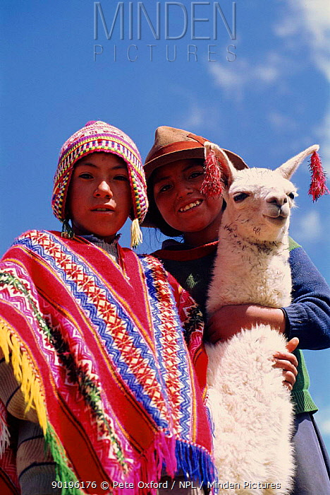 Peruvian children with llama near Cusco, Peru  -  Pete Oxford/ npl