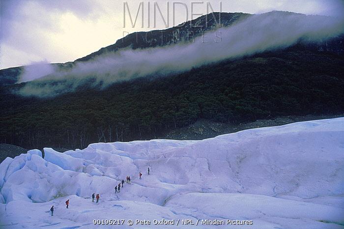Hiking on Perito Moreno glacier, Los Glaciares NP, Argentina, South America  -  Pete Oxford/ npl