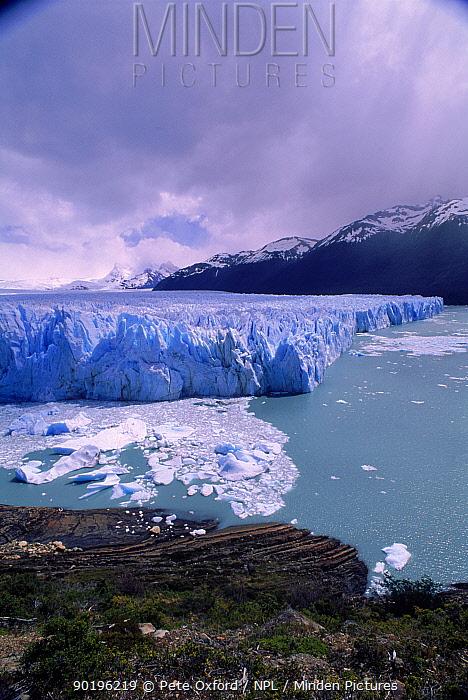 Perito Moreno Glacier, Los Glaciares NP, Argentina, South America  -  Pete Oxford/ npl