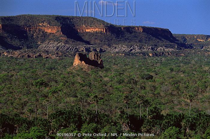 Red sandstone cliffs, nesting site of Hyacinth macaws, Piaui State, Brazil  -  Pete Oxford/ npl