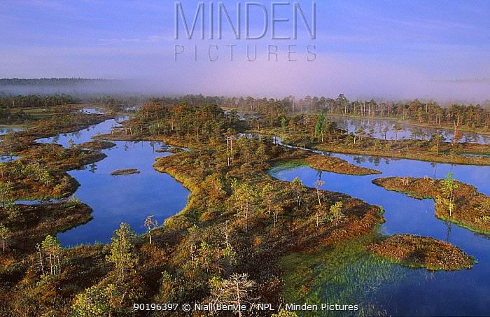 Wetlands at dawn Endla NR Estonia  -  Niall Benvie/ npl