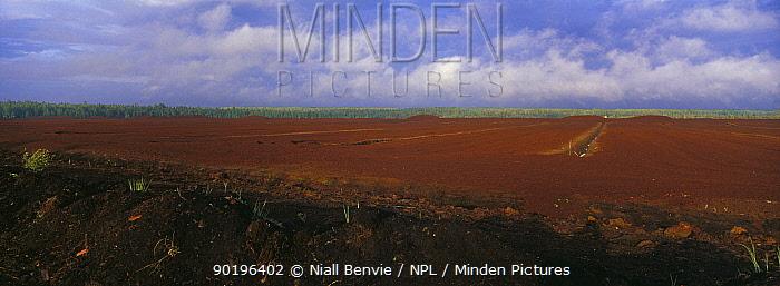 Industrial peat extraction at the Napsi soo Estonia  -  Niall Benvie/ npl