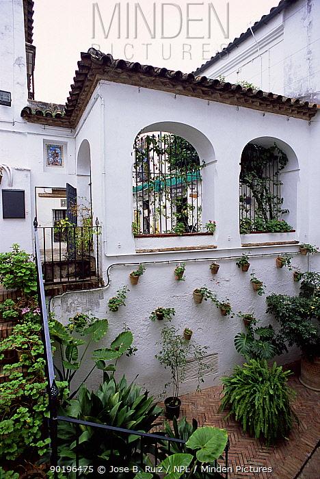 Patio garden in the jewish quarter, Cordoba, Spain  -  Jose B. Ruiz/ npl
