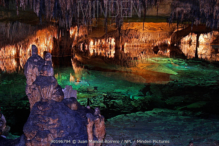Drach caves Majorca, Balearic Is, Spain  -  Juan Manuel Borrero/ npl