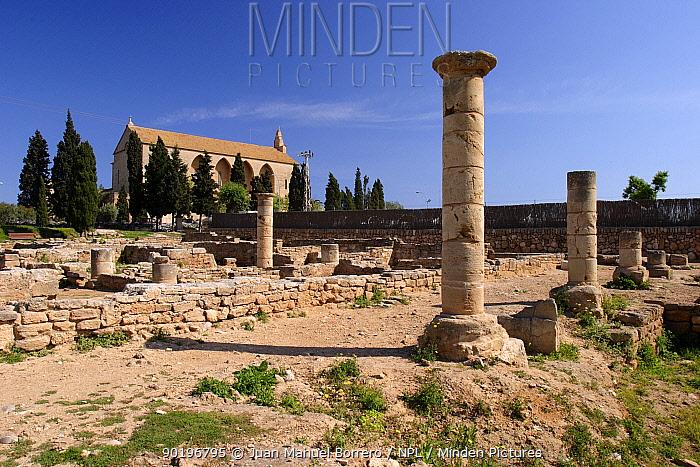 Roman ruins of Pollentia Pollen?a Majorca, Balearic Is, Spain  -  Juan Manuel Borrero/ npl
