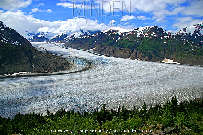 A view of the Salmon Glacier, Hyder, Alaska, USA  -  George Mccarthy/ npl