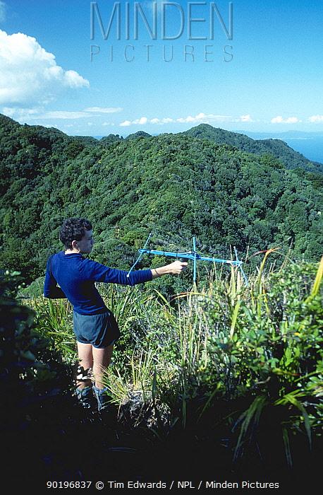 Radio-tracking female Kakapo (Strigops habroptilus) Little Barrier Is New Zealand Rarest  -  Tim Edwards/ npl