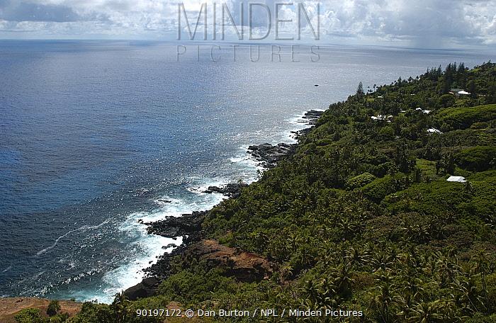Coastal landscape, Pitcairn Island, South Pacific  -  Dan Burton/ npl