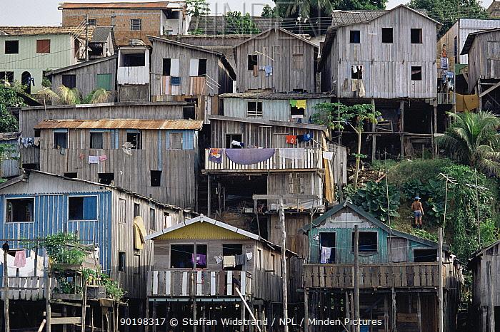 Cramped hillside terraced housing on stilts, Manaus, Brazil, South America  -  Staffan Widstrand/ npl