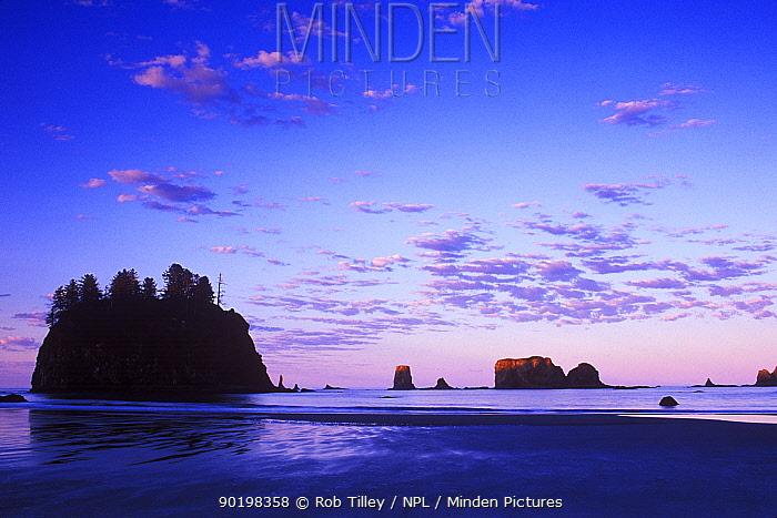 Second Beach at dawn, Olympic National Park, Washington, USA  -  Rob Tilley/ npl