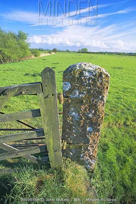 Stone gatepost, Somerset levels, UK  -  John Waters/ npl