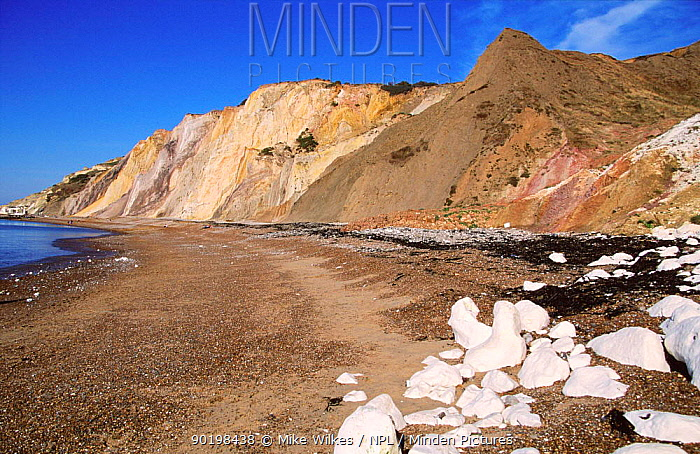 Coloured sand cliffs, Alum Bay, Isle of Wight, UK  -  Mike Wilkes/ npl