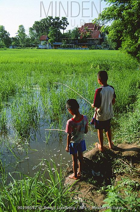Children fishing in rice field, E-Sarn, Thailand  -  Bengt Lundberg/ npl