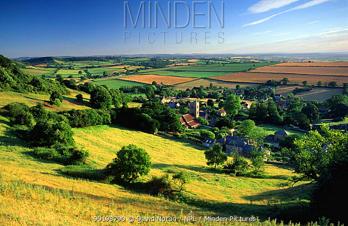Corton Denham village and surrounding countryside, near Yeovil in Somerset, England  -  David Noton/ npl