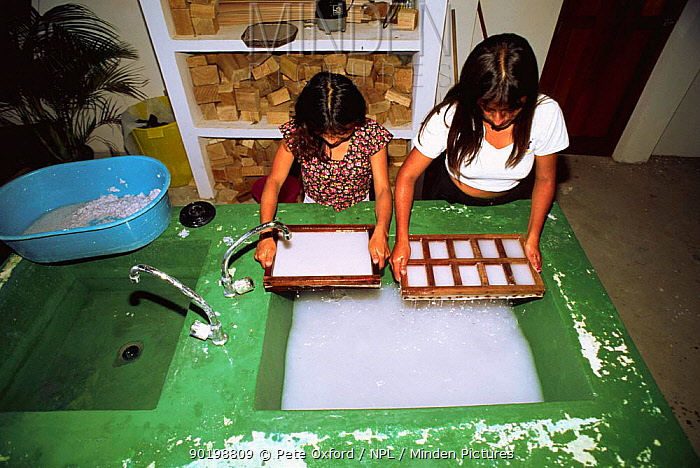 Paper recycling project, children making new paper, Pro Pueblo Foundation, La Entrada, Ecuador  -  Pete Oxford/ npl