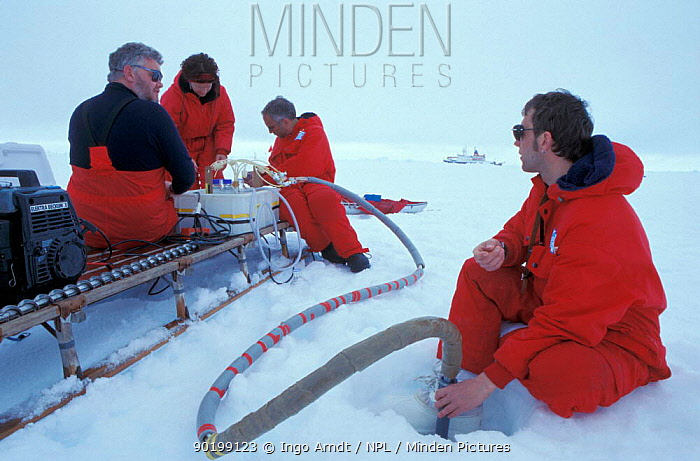 Researchers collecting water samples through the ice, ISPOL (ICE Station Polarstern) Expedition 2004, 2005 from Alfred Wegener Institute, Bremerhaven, Germany The Icebreaker Polarstern was drifting for five weeks with an ice floe in the central Weddell Sea  -  Ingo Arndt/ npl