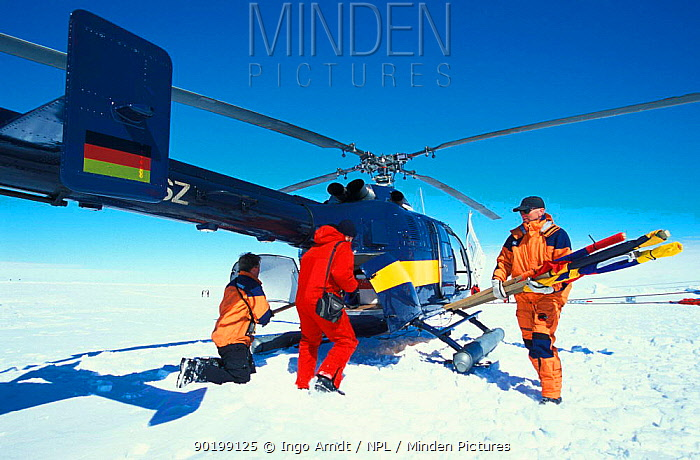 Helicopter crew and researcher loading helicopter on ice floe ISPOL (ICE Station Polarstern) Expedition 2004, 2005 from Alfred Wegener Institute, Bremerhaven, Germany The Icebreaker Polarstern was drifting for five weeks with an ice floe in the central Weddell Sea  -  Ingo Arndt/ npl