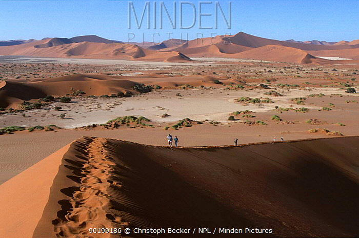 People climbing the dunes at Sossusviel Namib desert Namibi  -  Christoph Becker/ npl