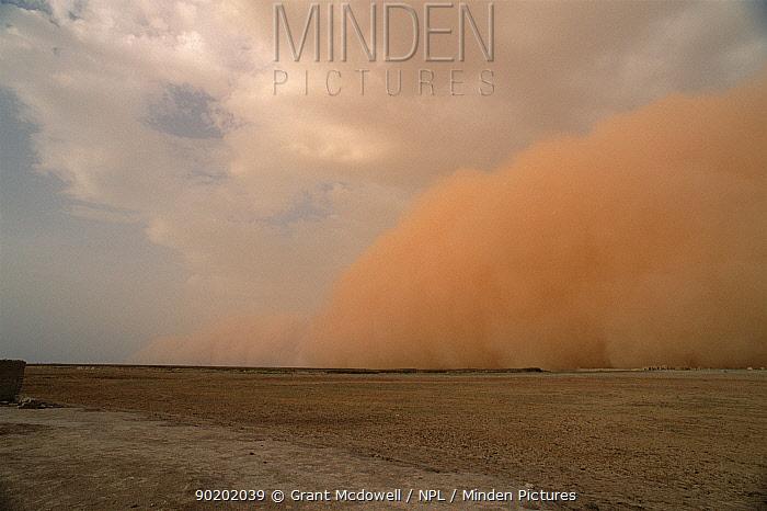 Dust storm preceeding thunderstorm in the Sahel, Mali, West Africa  -  Grant Mcdowell/ npl