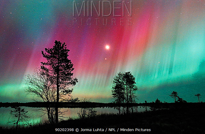 Aurora borealis colours in night sky over lake, northern Finland, October 2002  -  Jorma Luhta/ npl