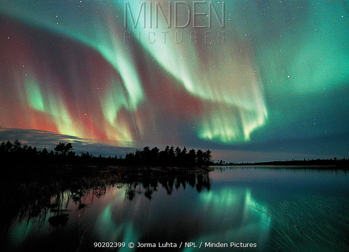 Aurora borealis colours in night sky over lake, northern Finland (nr Arctic circle), October 2002. Auroras also occur in the southern hemisphere where they are know as Aurora australis.  -  Jorma Luhta/ npl