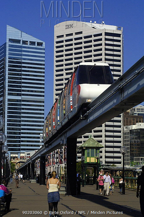 Monorail train which services Darling Harbour and Pyrmont, Sydney, New South Wales, Australia  -  Pete Oxford/ npl