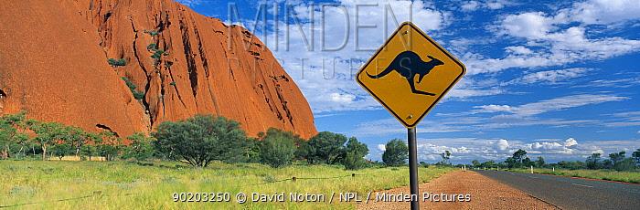 Ayer's Rock, Northern Territories, Australia  -  David Noton/ npl