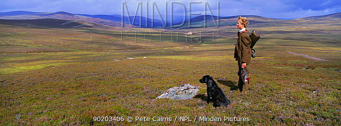 Young grouse shooter with black labrador dog Cairngorms NP, Scotland, UK  -  Pete Cairns/ npl