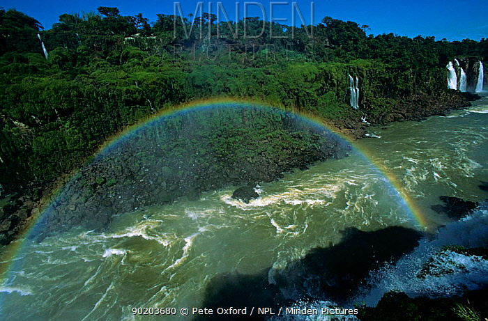 Iguazu Falls with rainbow, from Brazilian side, border of Brazil and Argentina South America  -  Pete Oxford/ npl