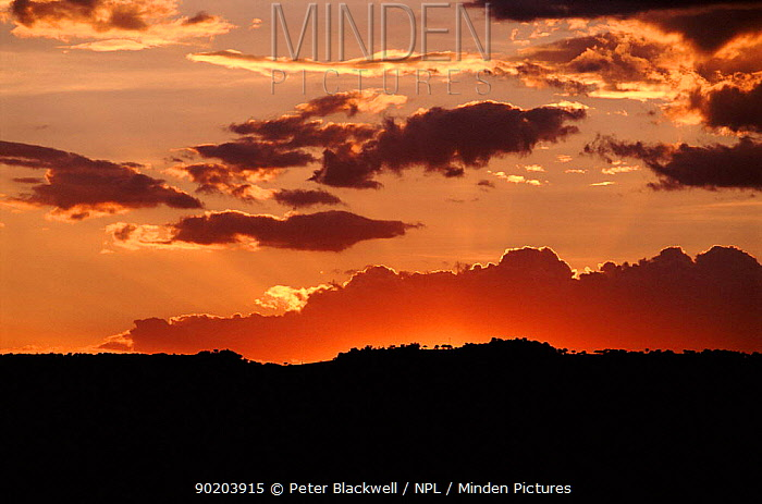 Sunset and clouds in Kenya, East Africa  -  Peter Blackwell/ npl