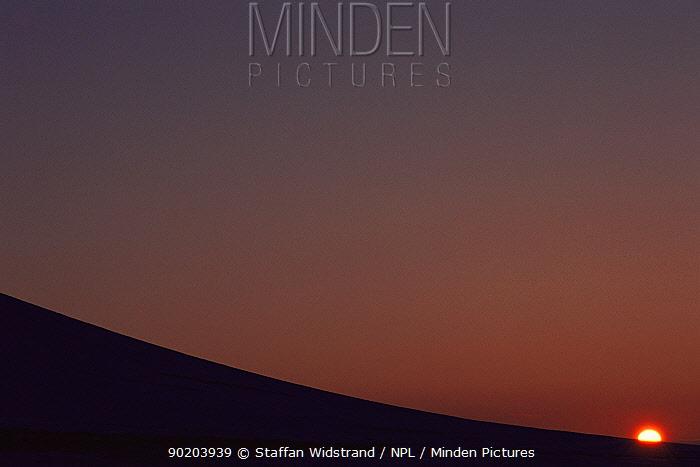 Sunset over Svalbard, Spitzbergen, Norway  -  Staffan Widstrand/ npl