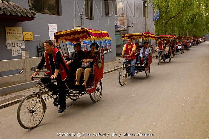 Chinese rickshaws driving through the narrow streets in Hutong, an old neighbourhood in Beijing, China  -  Pete Oxford/ npl