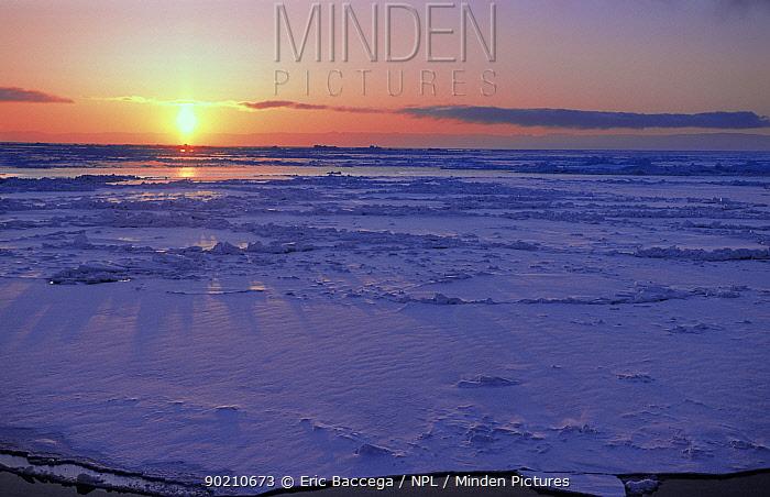 Ice field with setting, rising sun, Disko Bay, Greenland  -  Eric Baccega/ npl