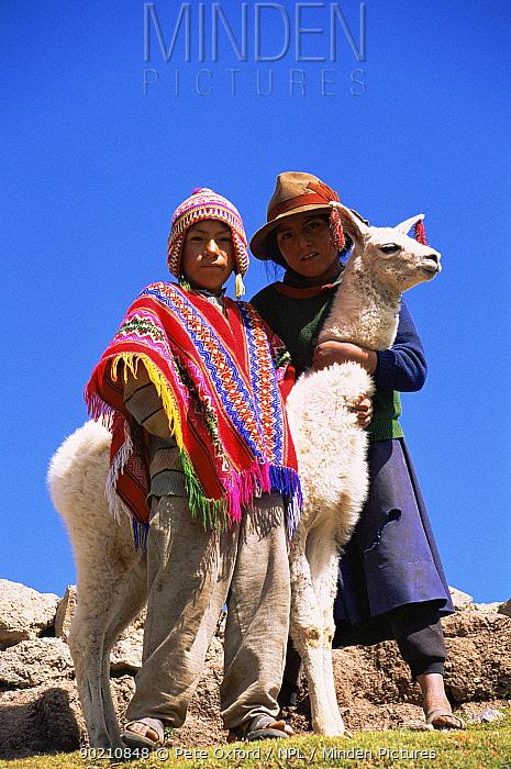 Local indian children with domestic Llama, near Cusco, Peru, South America  -  Pete Oxford/ npl