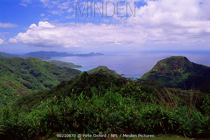 View from Old Mission, Mahe island, Seychelles, Indian Ocean  -  Pete Oxford/ npl