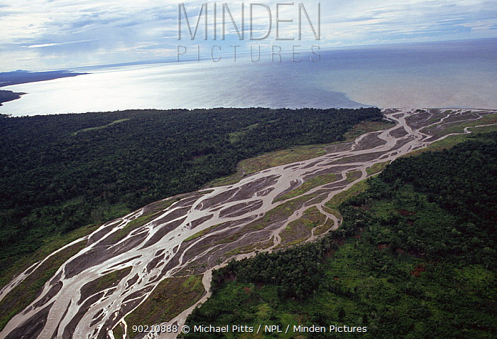 Aerial view of river estuary and delta near Lae, Papua New Guinea  -  Michael Pitts/ npl