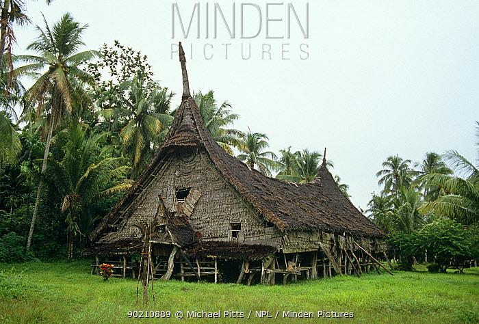 Spirit or Long house at Gojomas village, Sepik Region, Papua New Guinea  -  Michael Pitts/ npl