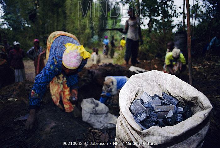 Rwandan family putting charcoal in sacks, Parc des Volcans NP, Rwanda  -  Jabruson/ npl
