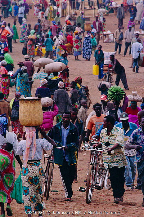 Crowd scene with bicycles and lady carrying bananas on head, Rugarama, Ruhengeri, Rwanda 2002  -  Jabruson/ npl