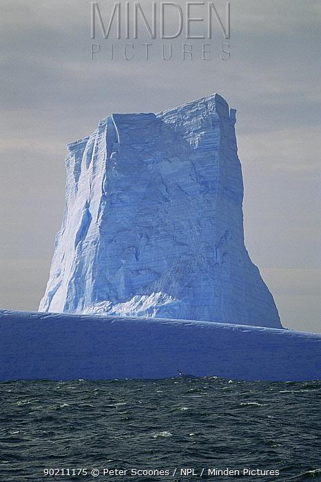 Icebergs, Antarctica  -  Peter Scoones/ npl
