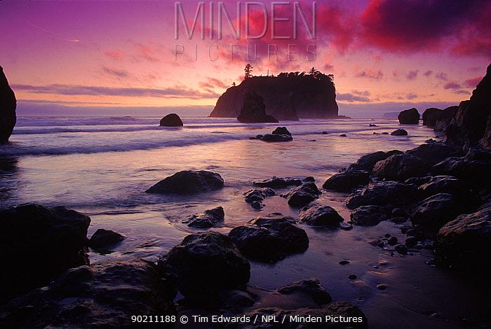 Ruby Beach at sunset Olympic NP, Washington, USA  -  Tim Edwards/ npl